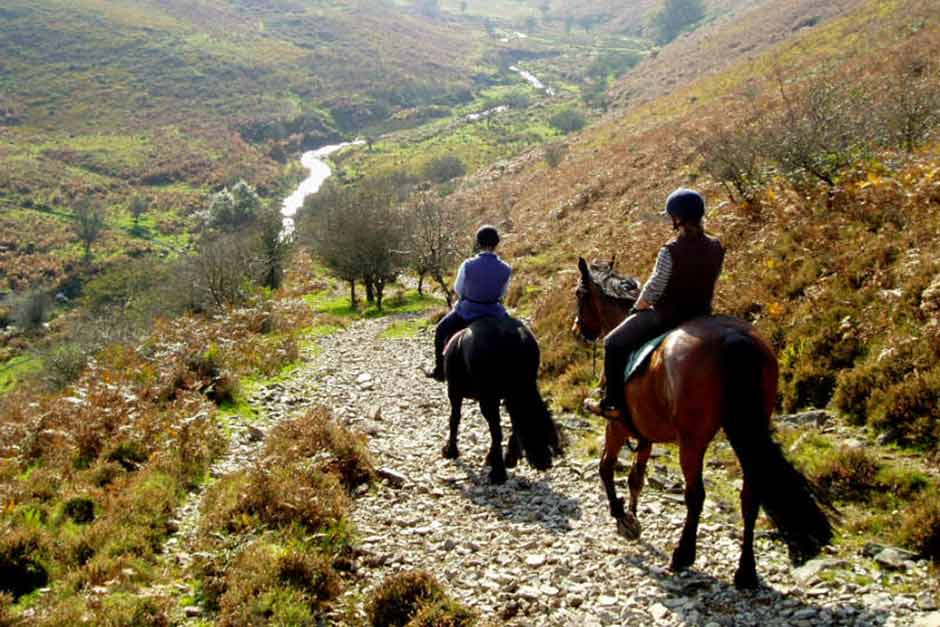Luxury Holiday Cottages In North Devon Near Mullacott Equestrian Centre Horse Riding