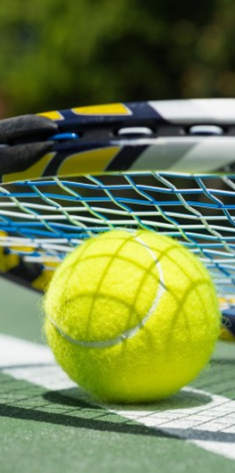 Luxury Holiday Cottages In North Devon With Tennis Court And Badminton Court